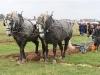 NPA Ploughing 2011-386