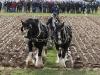 NPA Ploughing 2011-413