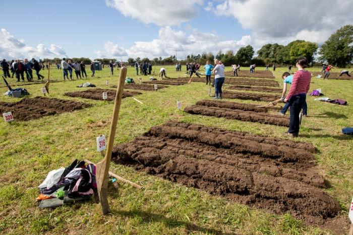 Ploughing Day 3 Secreggan 2017 088