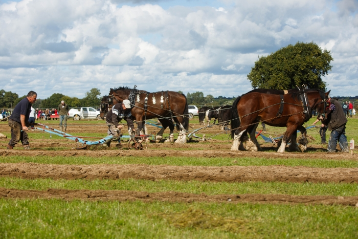Ploughing Day 3 Secreggan 2017 094