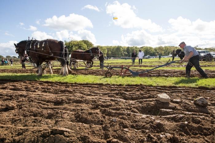 Ploughing Day 3 Secreggan 2017 099