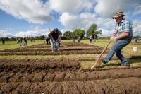 Ploughing Day 3 Secreggan 2017 091