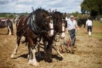 Ploughing Day 3 Secreggan 2017 095