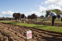 Ploughing Day 3 Secreggan 2017 097