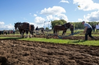 Ploughing Day 3 Secreggan 2017 100