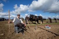 Ploughing Day 3 Secreggan 2017 103