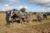 Ploughing Day 3 Secreggan 2017 102