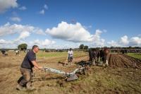 Ploughing Day 3 Secreggan 2017 105