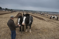 Ploughing-2013-Day-1-09