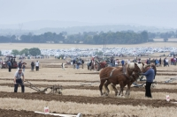 Work underway at the National Ploughing Championships at Ratheniska, Co Laois. Picture: Alf Harvey/hrphoto.ie